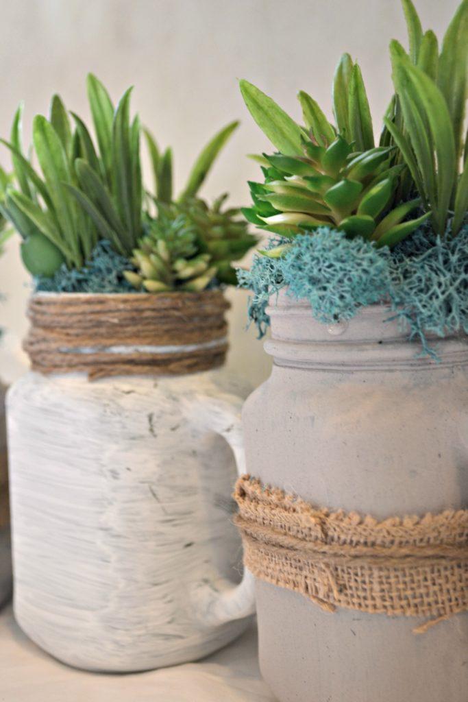 Mason Jar Succulents